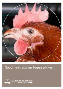 Treatment of feather pecking (in Dutch)