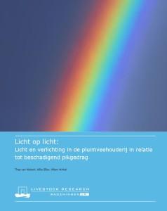 Report Licht op Licht (Van Niekerk et al., 2015).
